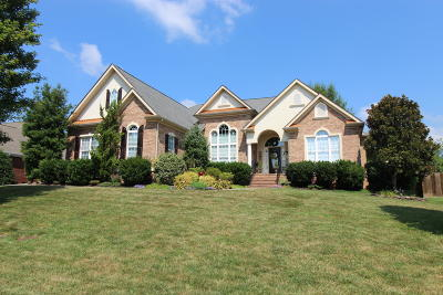 Blount County Single Family Home For Sale: 1120 Southwick Drive