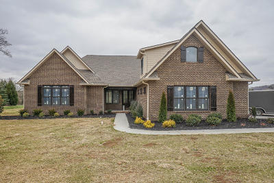 Blount County Single Family Home For Sale: 3524 Rankin Ferry Loop