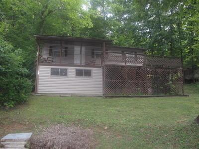 Single Family Home For Sale: 115 Arthur Hill Circle
