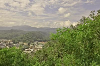 Gatlinburg Residential Lots & Land For Sale: 513 Campbell Lead Rd