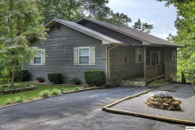 Sevierville Single Family Home For Sale: 1105 Alpine Drive
