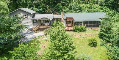 Sevier County Single Family Home For Sale: 512 Montgomery Rd