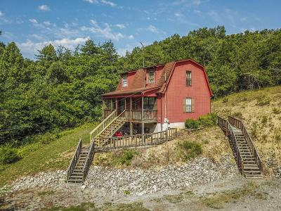 Sevierville Single Family Home For Sale: 801 Union Hill Rd