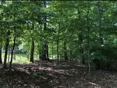 Lenoir City Residential Lots & Land For Sale: Brooksview Rd