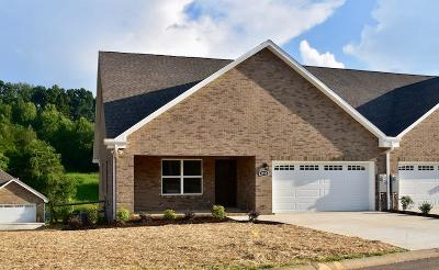 Sevier County Single Family Home For Sale: 1915 Canyon Rd