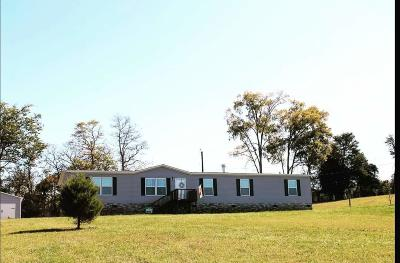 Strawberry Plains Single Family Home For Sale: 3304 Blue Springs Rd