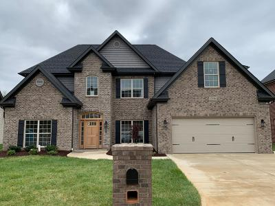 Knoxville Single Family Home For Sale: 12026 Salt Creek Lane