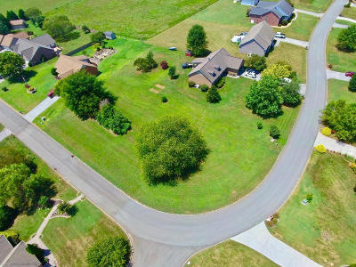 Maryville Residential Lots & Land For Sale: 441 Lager Drive