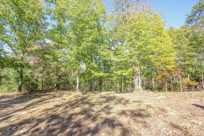 Maryville Residential Lots & Land For Sale: 3755 Chilly Springs Rd