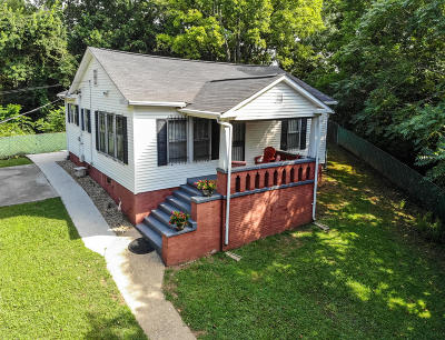 Knoxville Single Family Home For Sale: 3901 Bonnie View Ave