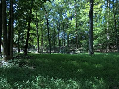 Anderson County Residential Lots & Land For Sale: Hickory Tr