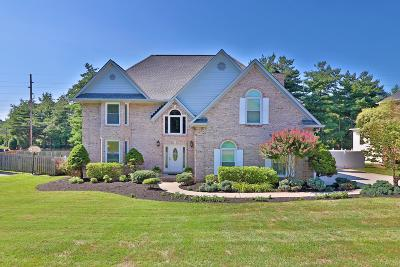 Knox County Single Family Home For Sale: 10624 Eagles View Drive