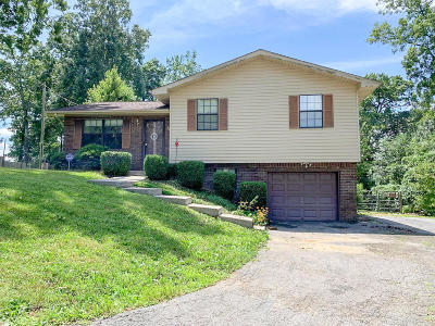 Single Family Home For Sale: 532 Norris Drive