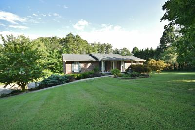 Knoxville Single Family Home For Sale: 1028 Henderson Lane
