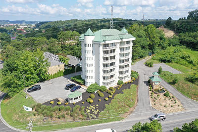 Pigeon Forge Condo/Townhouse For Sale: 503 Dollywood Lane #Unit 132