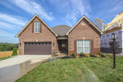 Blount County Single Family Home For Sale: 2303 Torrey Pines Drive