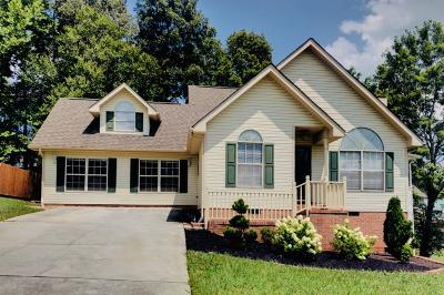 Knoxville Single Family Home For Sale: 7720 Water Tower Rd