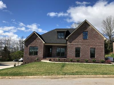 Knoxville Single Family Home For Sale: 12557 Daisy Field Lane