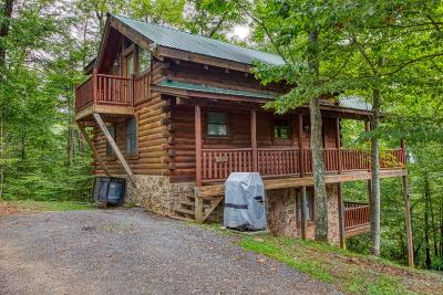 Sevier County Single Family Home For Sale: 2134 Red Bud Rd