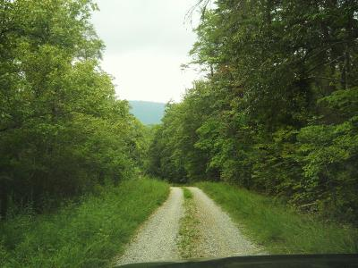 Maryville Residential Lots & Land For Sale: 6 Mile Rd