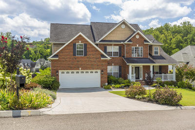 Knoxville Single Family Home For Sale: 1911 Cascade Falls Lane