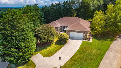 Maryville Single Family Home For Sale: 724 Mize Farm Court