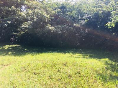 Knoxville Residential Lots & Land For Sale: S 1004 Andes St