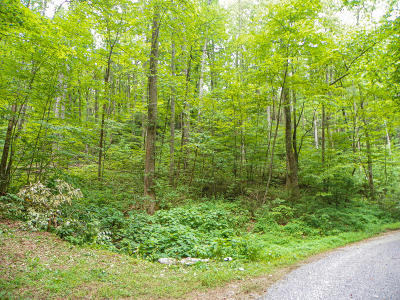 Sevierville Residential Lots & Land For Sale: Lot# 8 Brooke Hollow Lane