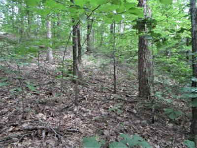 Maryville Residential Lots & Land For Sale: 611 Solomon Seal Way