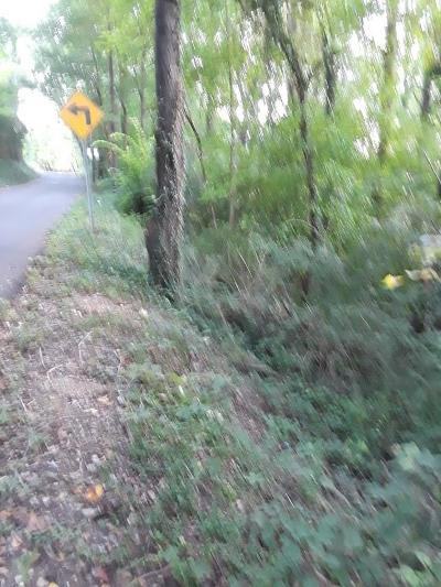 Knoxville Residential Lots & Land For Sale: Granville Terrace
