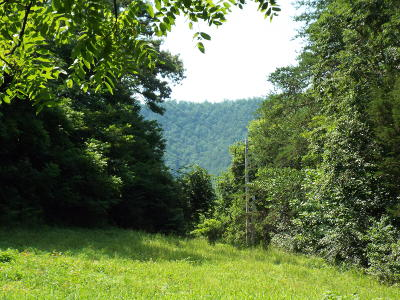 Residential Lots & Land For Sale: English Mountain Road