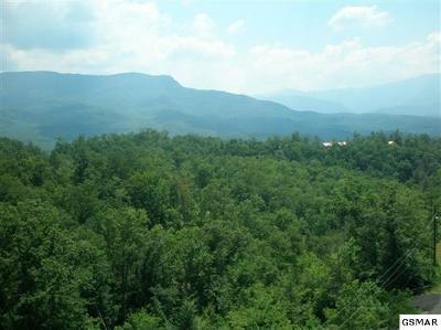 Gatlinburg Residential Lots & Land For Sale: Lot 70 Big Bear Ridge Rd