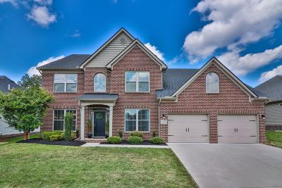 Knoxville Single Family Home For Sale: 1735 Avashire Lane