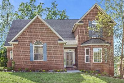 Knoxville Single Family Home For Sale: 1615 Briarfield Lane