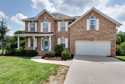 Knoxville Single Family Home For Sale: 4838 Creekrock Lane