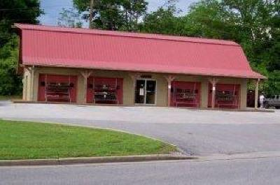 Blount County Commercial For Sale: 2726 Druid Hill Drive