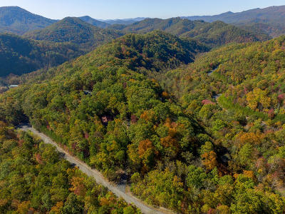 Sevier County Residential Lots & Land For Sale: Settlers View Ln