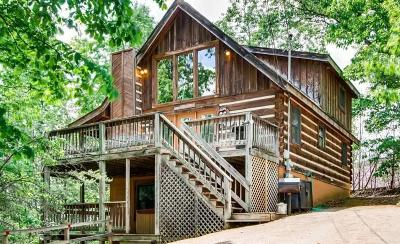 Single Family Home For Sale: 809 Ski View Lane