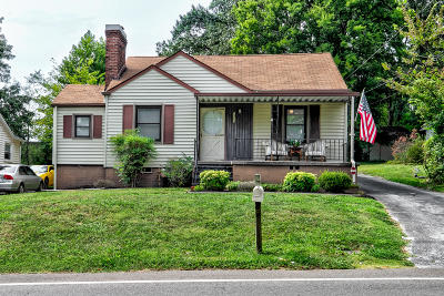 Knoxville Single Family Home For Sale: 2425 Buffat Mill Rd