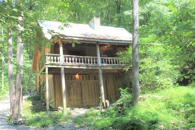 Lafollette Single Family Home For Sale: 278 Log Home Lane