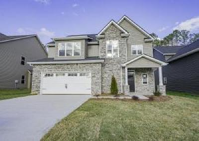 Knoxville Single Family Home For Sale: 2946 Spencer Ridge Lane