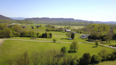 Blount County Residential Lots & Land For Sale: 4133 Vista Grande Drive