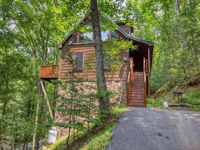 Sevierville Single Family Home For Sale: 1606 School House Gap Rd