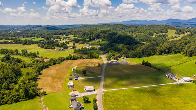 Clinton Residential Lots & Land Pending - Continue To Show - F: Brushy Valley Rd