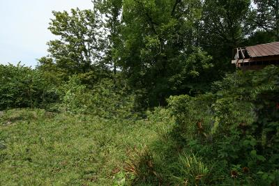 Anderson County, Campbell County, Claiborne County, Grainger County, Union County Residential Lots & Land For Sale: 205 Wolfe Rd