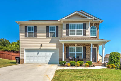Knoxville Single Family Home For Sale: 2812 Red Ellis Lane