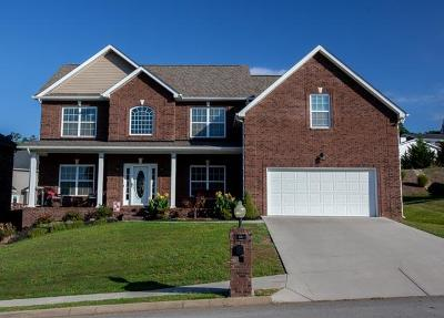 Knoxville Single Family Home For Sale: 8523 Coral Sand Lane