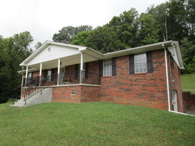 Grainger County Single Family Home For Sale: 13150 Hwy 131