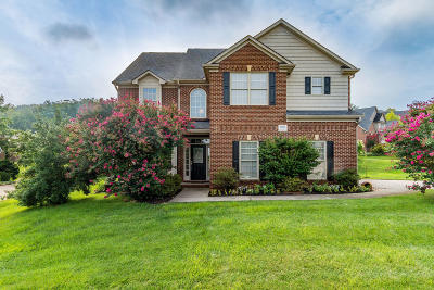 Knoxville Single Family Home For Sale: 1800 Blue Crane Lane