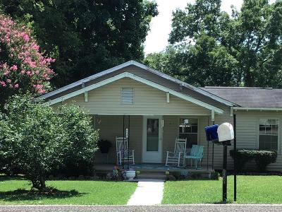 Knoxville Single Family Home For Sale: 6640 Ridgeview Rd